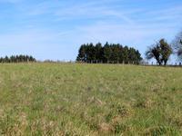 Terrain à vendre à ANGOISSE en Dordogne - photo 2