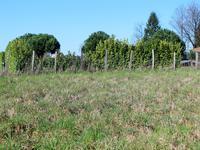 Terrain à vendre à ANGOISSE en Dordogne - photo 6