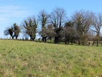 Terrain à vendre à ANGOISSE en Dordogne - photo 1