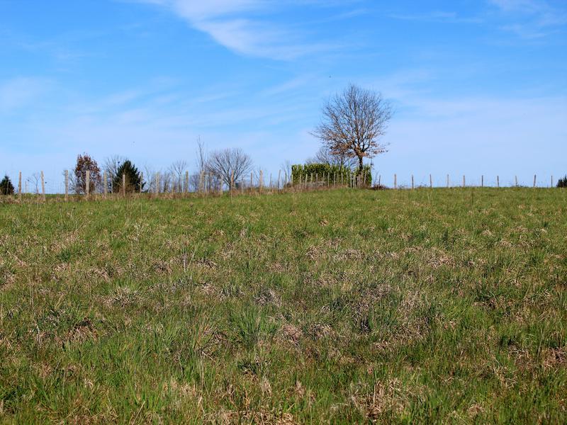 Terrain à vendre à ANGOISSE(24270) - Dordogne