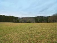 French property, houses and homes for sale in CAMBOUNES Tarn Midi_Pyrenees