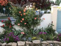 French property for sale in NEBIAN, Herault - €275,000 - photo 3