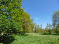 French property for sale in LOYAT, Morbihan - €295,000 - photo 4