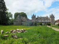 chateau for sale in MOULINSAllier Auvergne