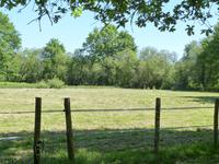 French property for sale in GRIGNOLS, Gironde - €307,000 - photo 2