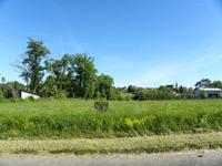 Terrain à vendre à DUSSAC en Dordogne - photo 4