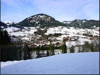 French property for sale in PRAZ SUR ARLY, Haute Savoie - €320,000 - photo 5