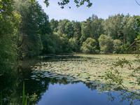 Lacs à vendre à ABJAT SUR BANDIAT en Dordogne - photo 3