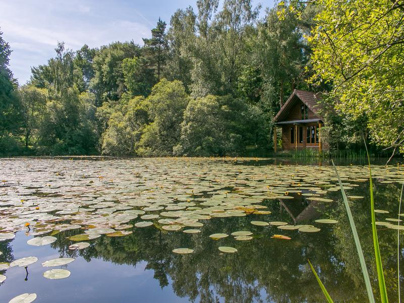 Lacs à vendre à ABJAT SUR BANDIAT(24300) - Dordogne