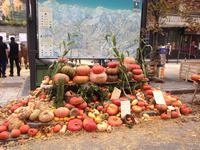 Terrain à vendre à SAINT GERVAIS LES BAINS en Haute Savoie - photo 9