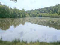 French property for sale in AJAIN, Creuse - €285,000 - photo 9