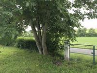 Terrain à vendre à CHALAIS en Charente - photo 1