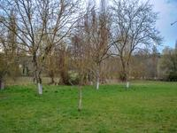 French property for sale in BELVES, Dordogne - €99,000 - photo 8