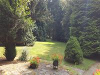 Maison à vendre à LA CHAPELLE TAILLEFERT en Creuse - photo 4