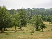 French property, houses and homes for sale inMONCLAR DE QUERCYTarn Midi_Pyrenees