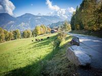 French property for sale in SAINT GERVAIS LES BAINS, Haute Savoie - €311,400 - photo 6