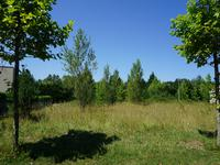 French property for sale in ST FERREOL LE LAC, Haute Garonne - €60,000 - photo 2