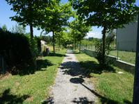 French property for sale in ST FERREOL LE LAC, Haute Garonne - €60,000 - photo 3