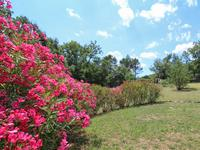 French property for sale in BESSE SUR ISSOLE, Var - €399,000 - photo 9