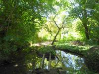 French property for sale in VILLENEUVE SUR YONNE, Yonne - €377,000 - photo 2