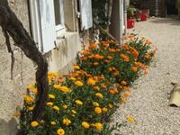 French property for sale in MESSE, Deux Sevres - €160,500 - photo 9