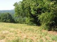 French property for sale in BEYNAT, Correze - €43,245 - photo 3