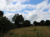 French property for sale in CALLAC, Cotes d Armor - €135,000 - photo 10