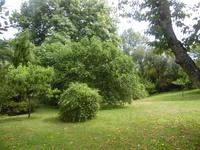 French property for sale in BOURG, Gironde - €360,400 - photo 8