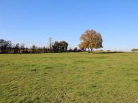 French property for sale in ERBRAY, Loire Atlantique - €299,600 - photo 4