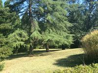 French property for sale in BRIVE LA GAILLARDE, Correze - €487,600 - photo 5