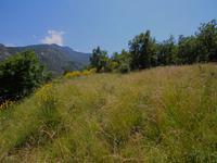 terrain à vendre à CLARA, Pyrenees_Orientales, Languedoc_Roussillon, avec Leggett Immobilier