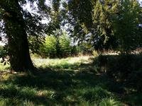French property for sale in ST CLEMENT, Correze - €299,600 - photo 10