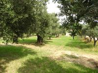 French property, houses and homes for sale inAUPSProvence Cote d'Azur Provence_Cote_d_Azur
