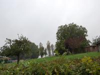 French property for sale in GUIGNY, Pas de Calais - €37,440 - photo 6