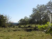 French property for sale in ANGOISSE, Dordogne - €19,000 - photo 7