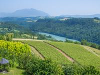 French property, houses and homes for sale inCORBONODAin Rhone Alps