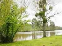 French property for sale in CONFOLENS, Charente - €278,200 - photo 2