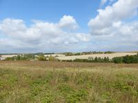 French property for sale in PERIGNAC, Charente - €88,000 - photo 3