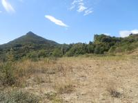 French property for sale in TAUSSAC LA BILLIERE, Herault - €71,000 - photo 3