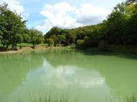 Lacs à vendre à PLAZAC en Dordogne - photo 7