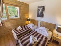 French ski chalets, properties in , , Espace Killy