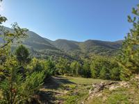 French property for sale in CERESTE, Alpes de Hautes Provence - €699,500 - photo 3