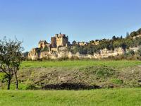 French property for sale in BEYNAC ET CAZENAC, Dordogne - €299,600 - photo 10