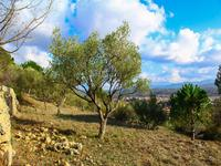 French property, houses and homes for sale inBESSE SUR ISSOLEVar Provence_Cote_d_Azur