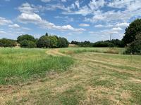French property for sale in CELLES SUR BELLE, Deux Sevres - €445,200 - photo 5