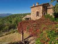 French property, houses and homes for sale in PORTES Gard Languedoc_Roussillon