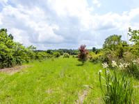 French property for sale in CASTELJALOUX, Lot et Garonne - €66,000 - photo 2