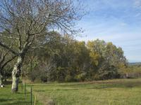 French property for sale in LE BUISSON DE CADOUIN, Dordogne - €46,000 - photo 6