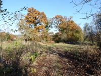 French property for sale in ST GEORGES DE ROUELLEY, Manche - €31,000 - photo 6