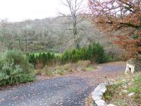 French property for sale in CASTELNAUD LA CHAPELLE, Dordogne - €214,000 - photo 10